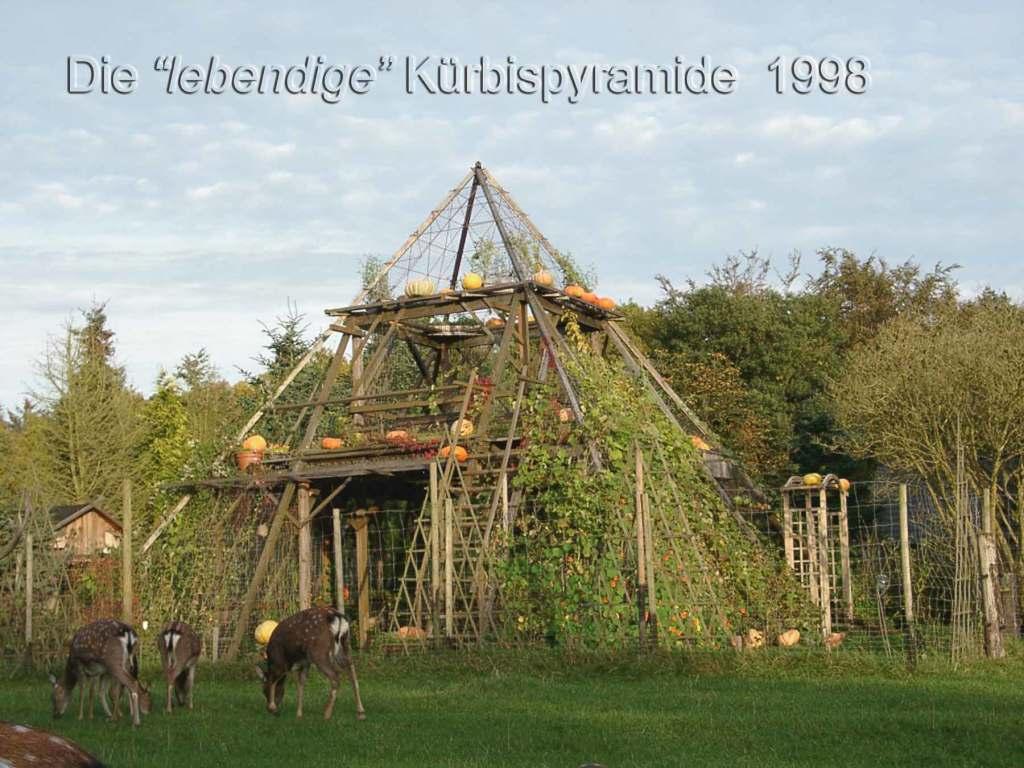 pyramide-lgs2002 (4)